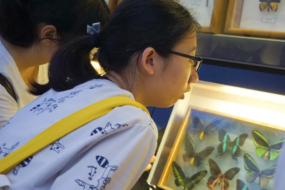 光华管理学院开放了光华楼供学生和家长们参观