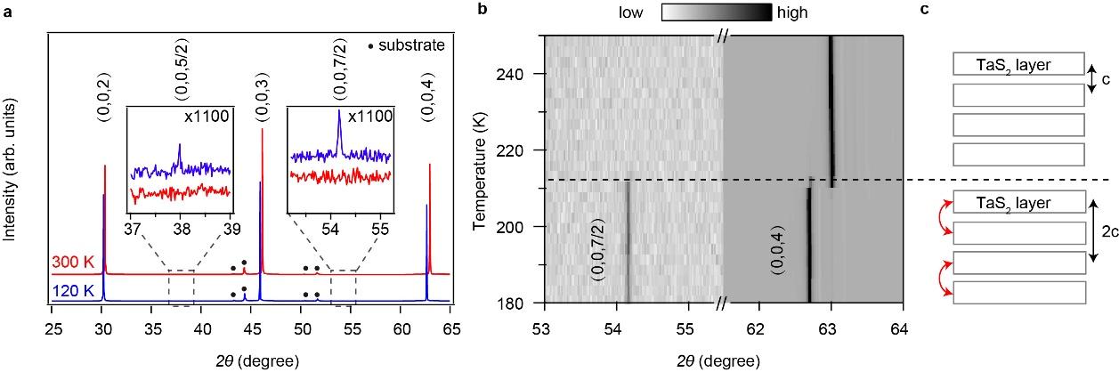 北京大学量子材料科学中心在1T-TaS2材料中发现的能带绝缘体到莫特绝缘体相变--图1:变温依赖的X射线衍射谱。a 1T-TaS2在低温120K和常温300K的沿c轴方向衍射谱对比图,插图是放大1100倍的(0,0,5/2)和(0,0,7/2)半整数峰;b 1T-TaS2在升温过程中(0,0,7/2)和(0,0,4)衍射峰的演化图;c 1T-TaS2层间二聚的示意图