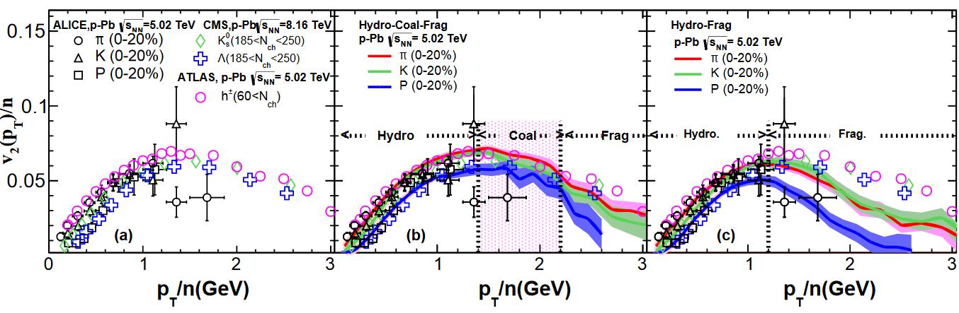 研究人员在LHC 能区p-Pb碰撞小系统QGP信号研究方向取得重要进展