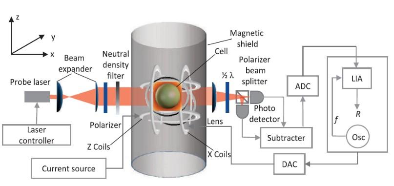 左图为基于同一种原子的共磁力仪系统结构图.jpg