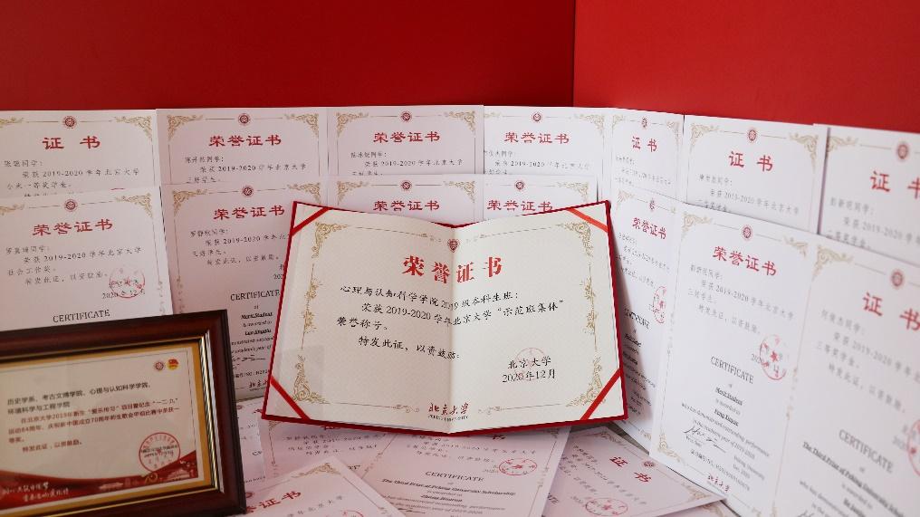 心理与认知科学学院2019级本科生班获评北京高校