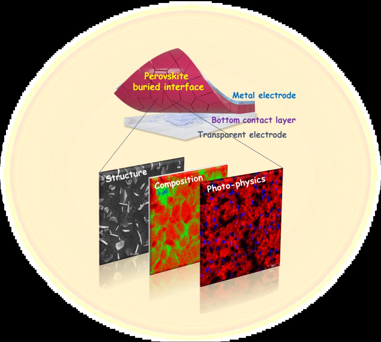 """图1. 钙钛矿多晶薄膜""""埋底界面""""的研究"""